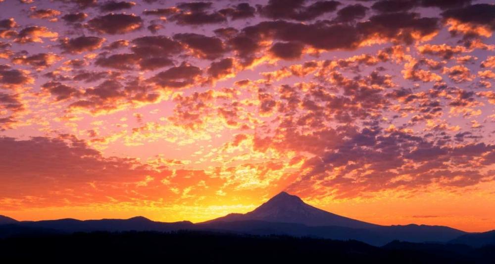Mt. Hood XXIII Leahy, Ike 145945
