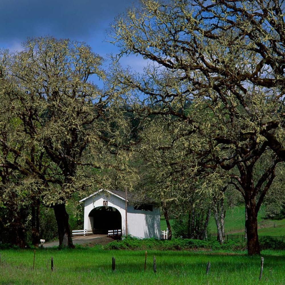 Harris Covered Bridge Leahy, Ike 145977