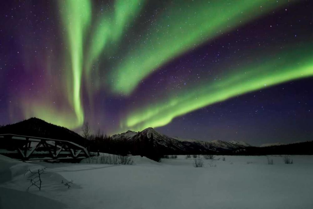 Aurora Borealis IV Malvin, Larry 24840