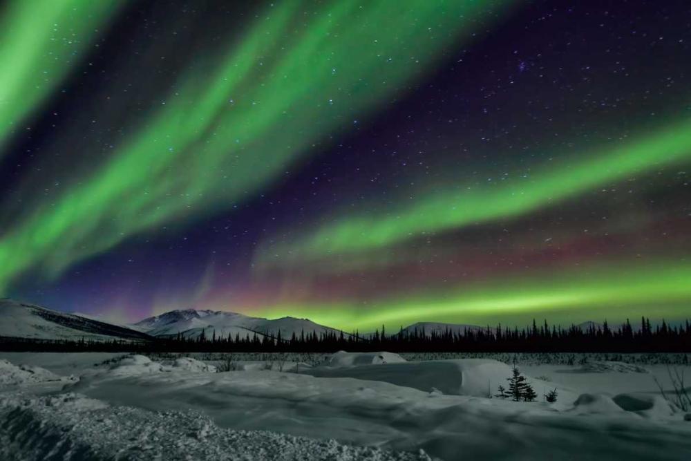 Aurora Borealis V Malvin, Larry 24841