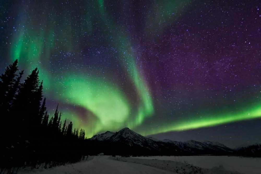 Aurora Borealis VI Malvin, Larry 24842