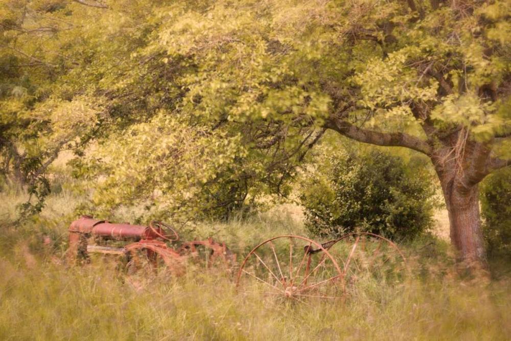 Old Tractor I Mahan, Kathy 20166