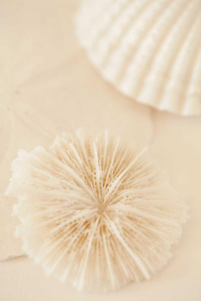 Ocean Treasures I Millet, Karyn 9675