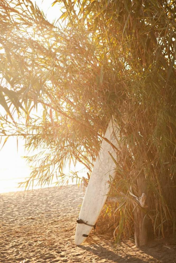 Tropical Oasis V Millet, Karyn 9792