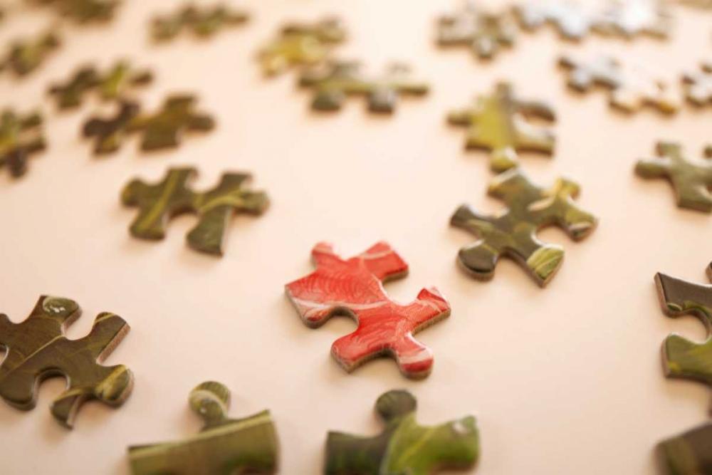 Puzzle IV Millet, Karyn 20294