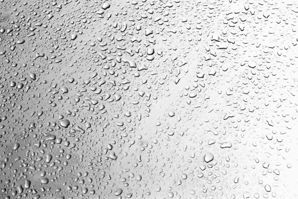 Rain Drops II Millet, Karyn 20304