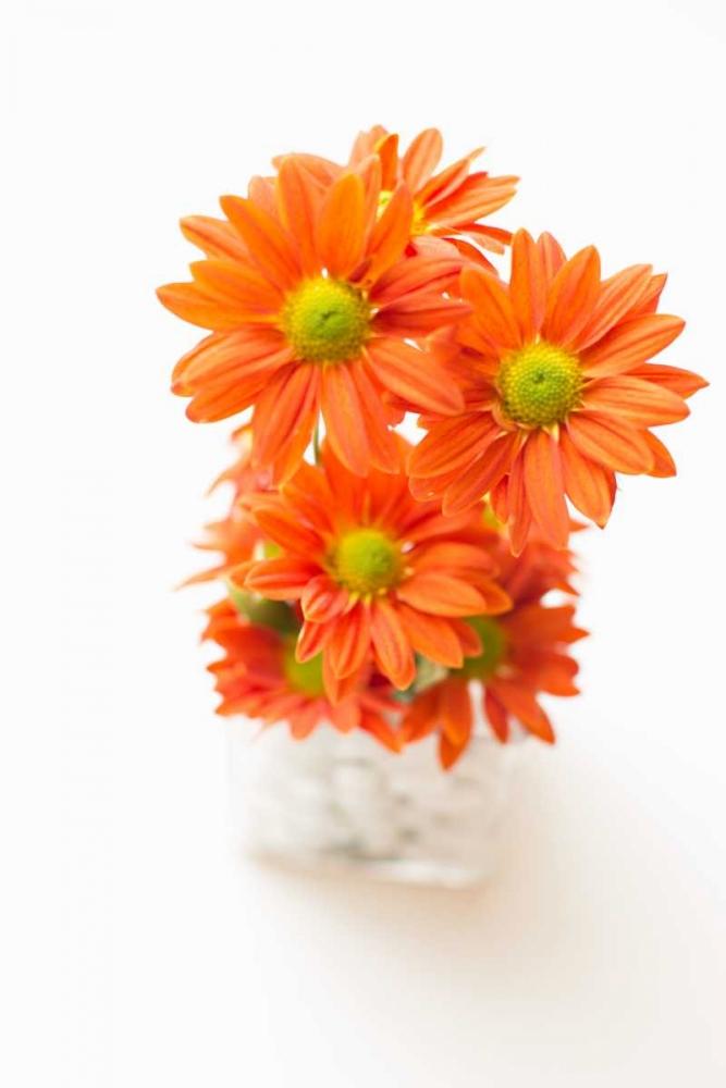 Spring Bouquet Millet, Karyn 146195