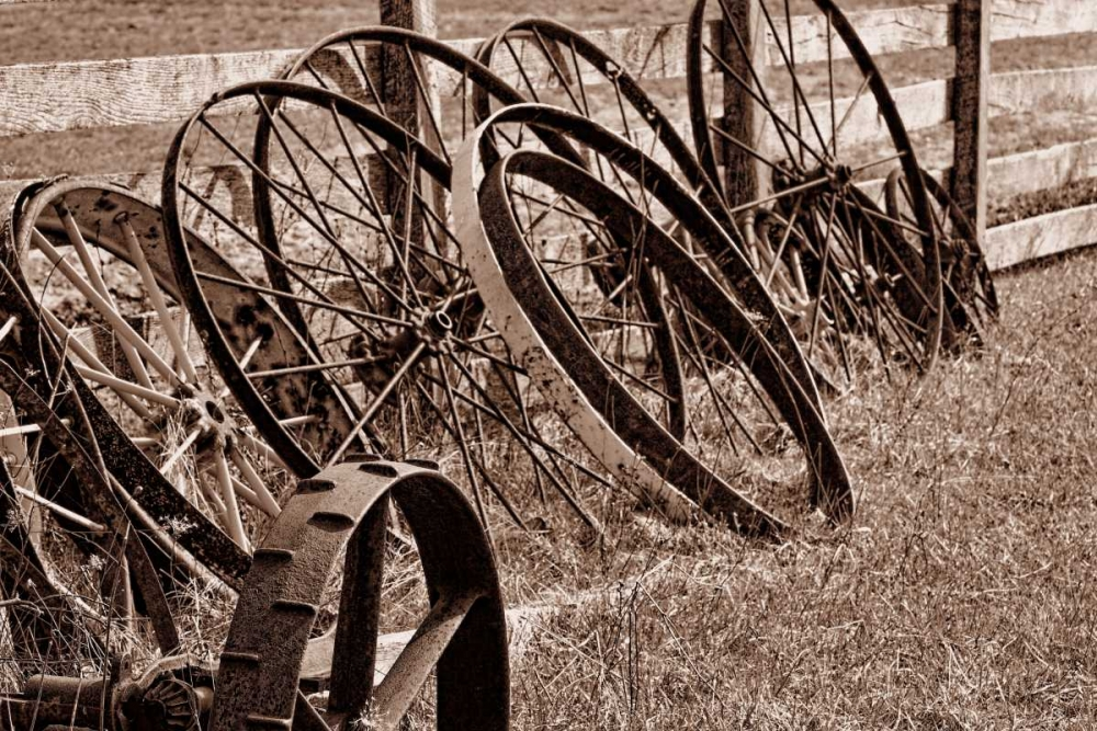 Antique Wagon Wheels II McNemar, C. Thomas 2569
