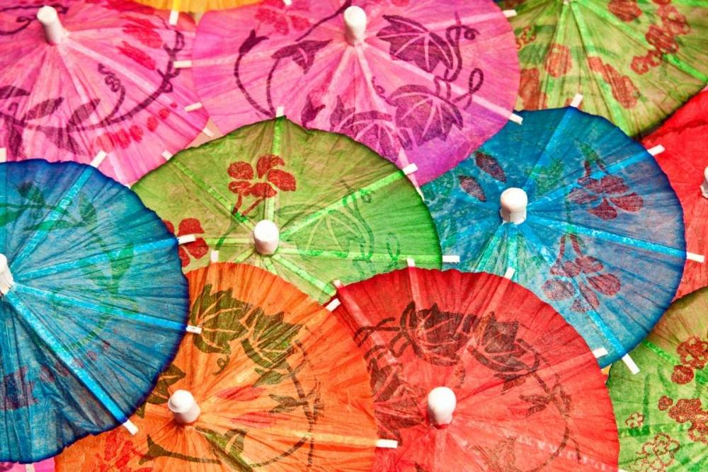 Cocktail Umbrellas VI McNemar, C. Thomas 2582