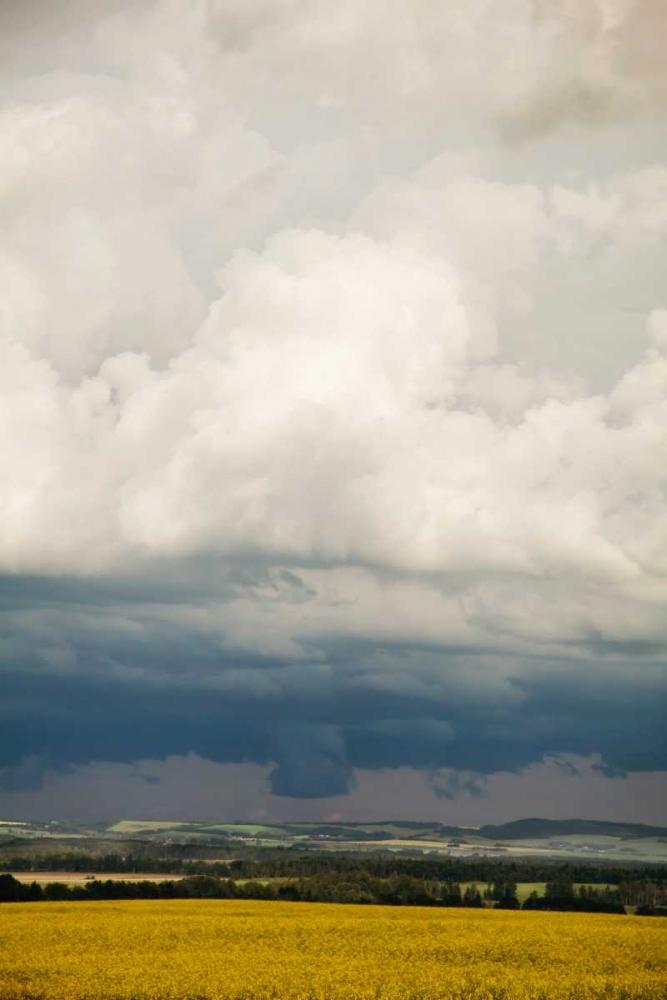 Severe Weather Murray, Roberta 64251