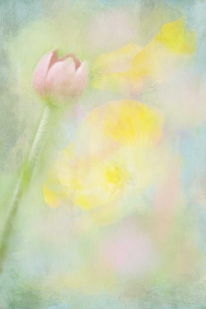 Easter Garden Murray, Roberta 64299