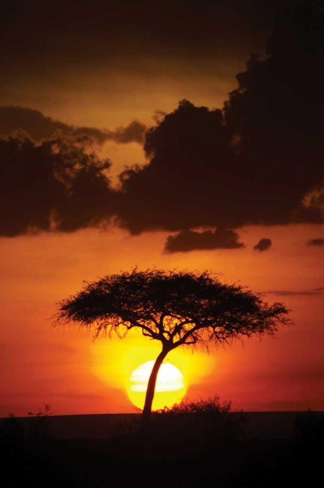 Kenya Sunrise Parker, Susann 2732