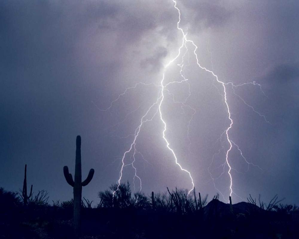 Electric Desert I Taylor, Douglas 25178