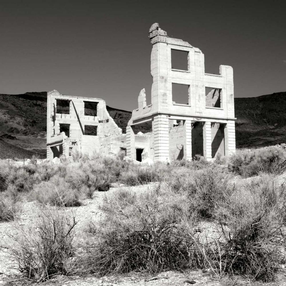 Rhyolite Ruin II BW Taylor, Douglas 25333