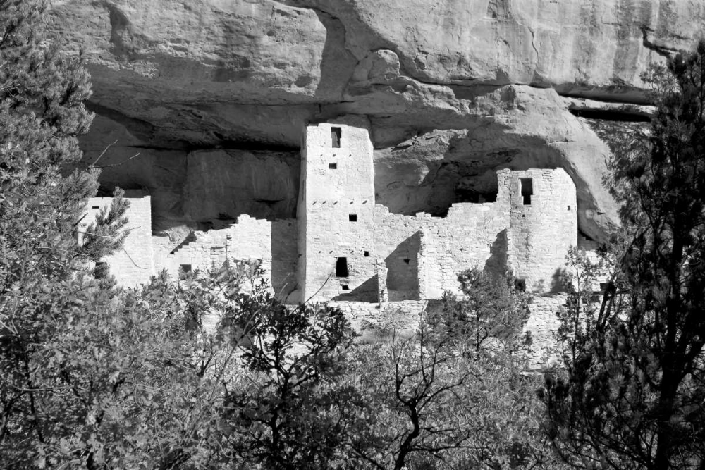 Cliff Dwelling At Mesa Verde BW Taylor, Douglas 64325