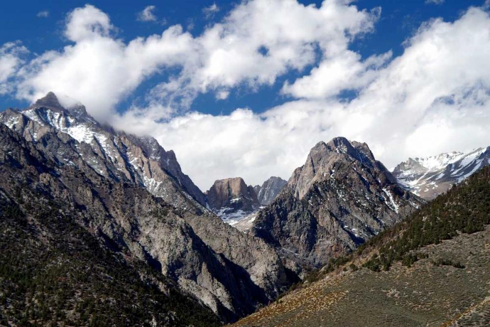 High Sierra Spring Taylor, Douglas 146608