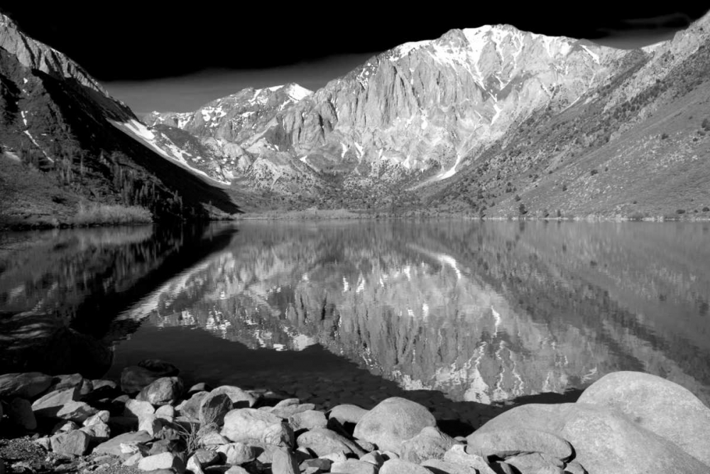 Laurel Mountain Reflections BW Taylor, Douglas 146636