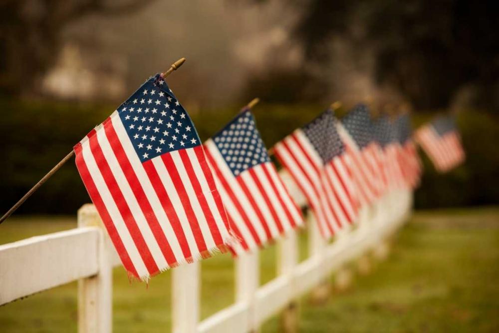 Flags I Clayton-Thompson, Philip 29737