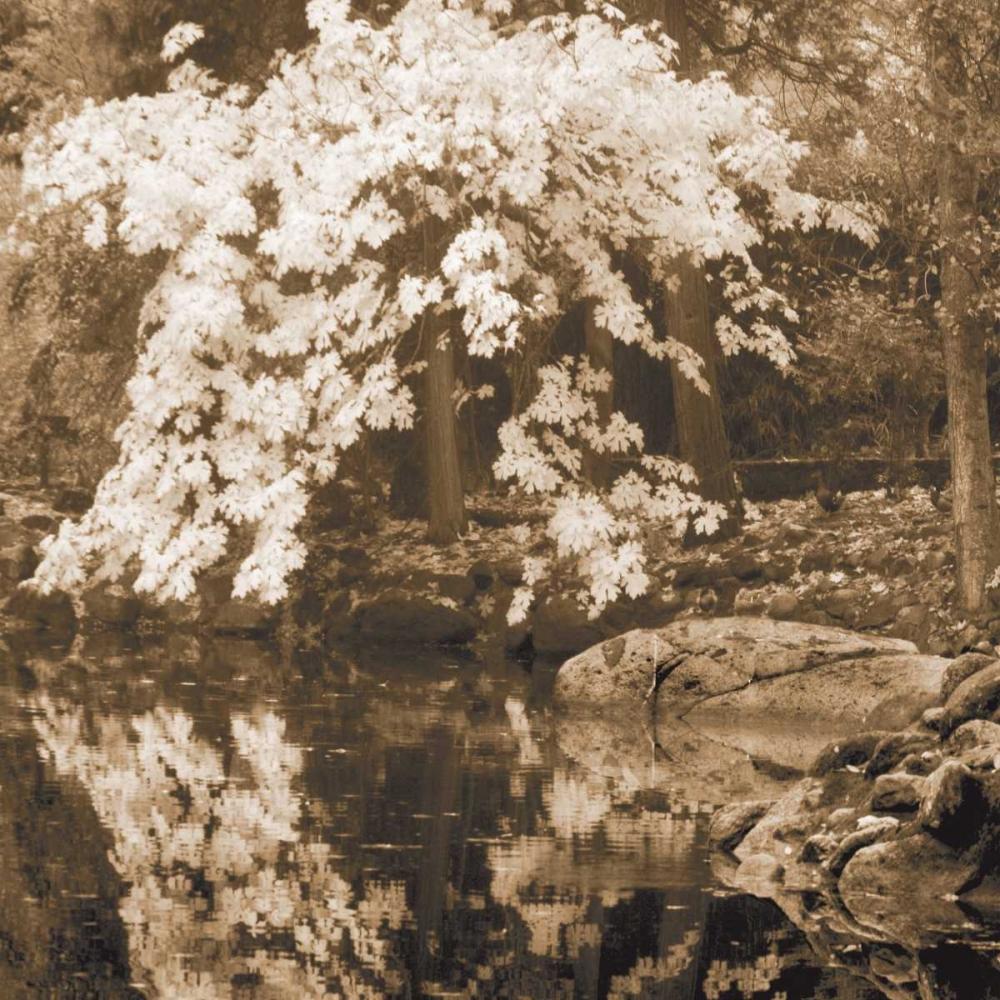 Autumn Reflections II Geyman, Vitaly 3889