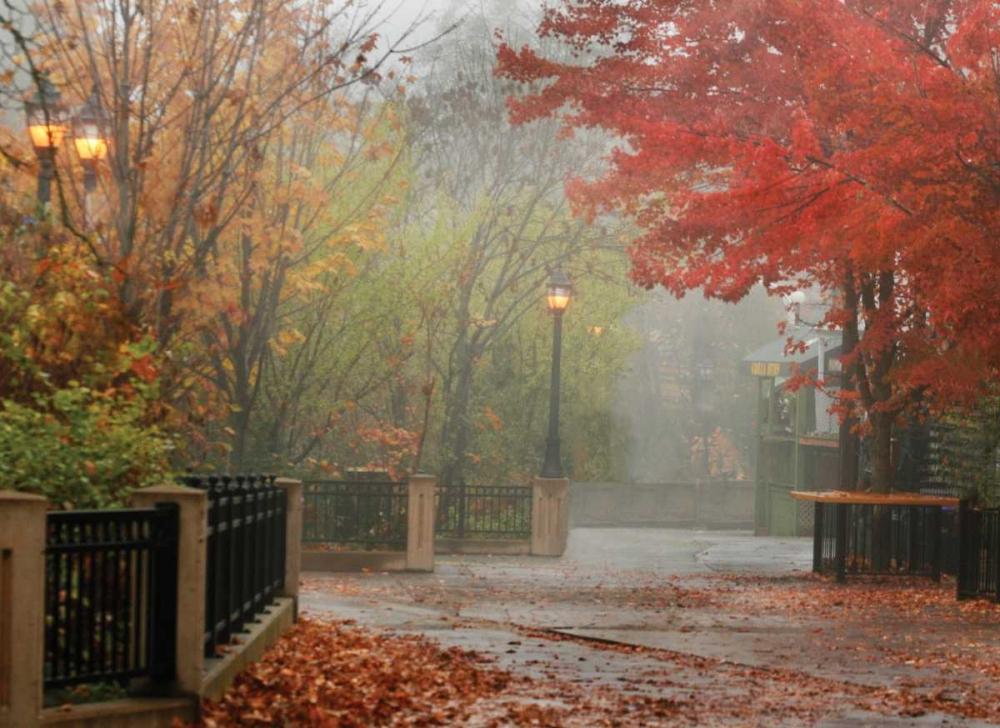 Fall Plaza I Geyman, Vitaly 3927