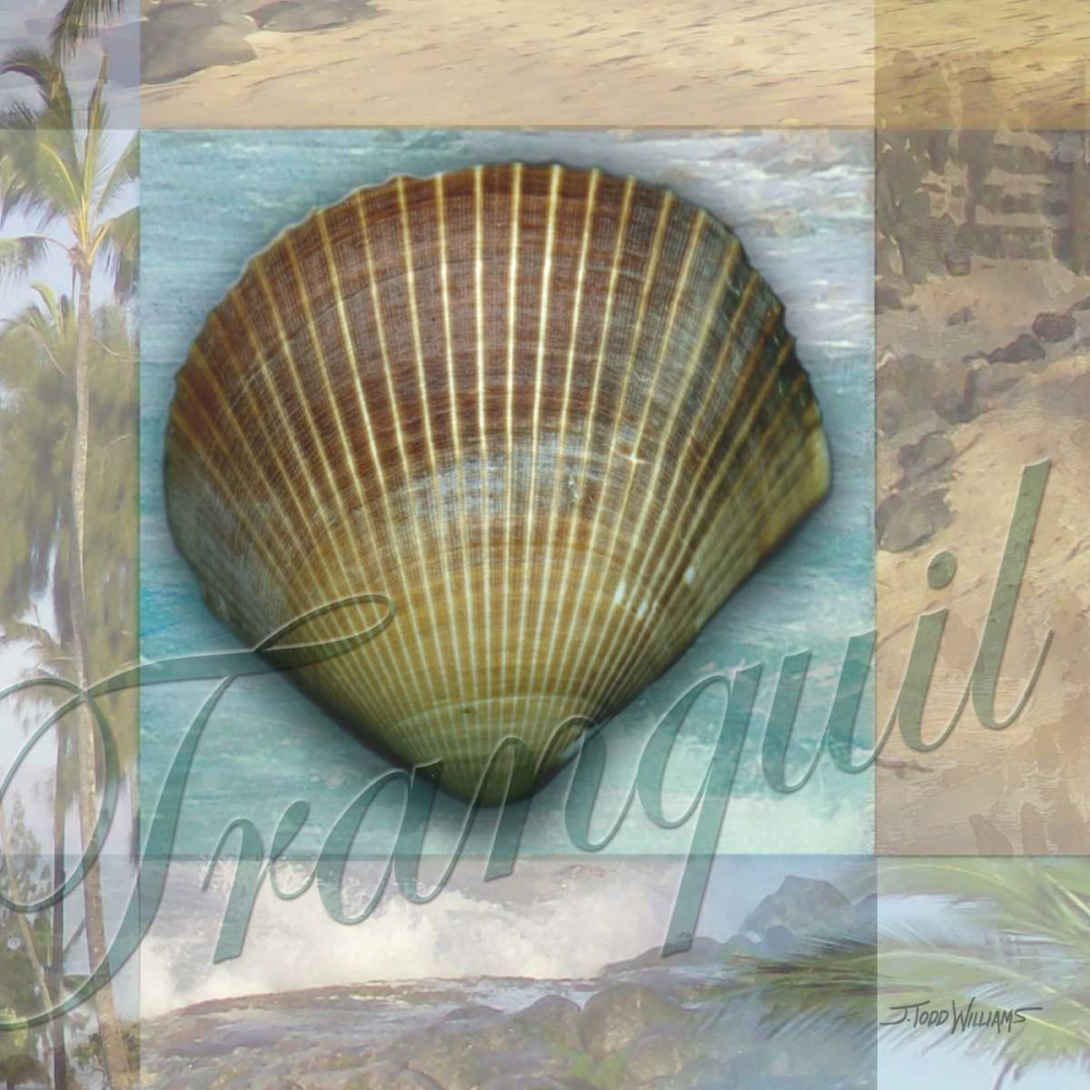 Tranquil Shell Williams, Todd 6630