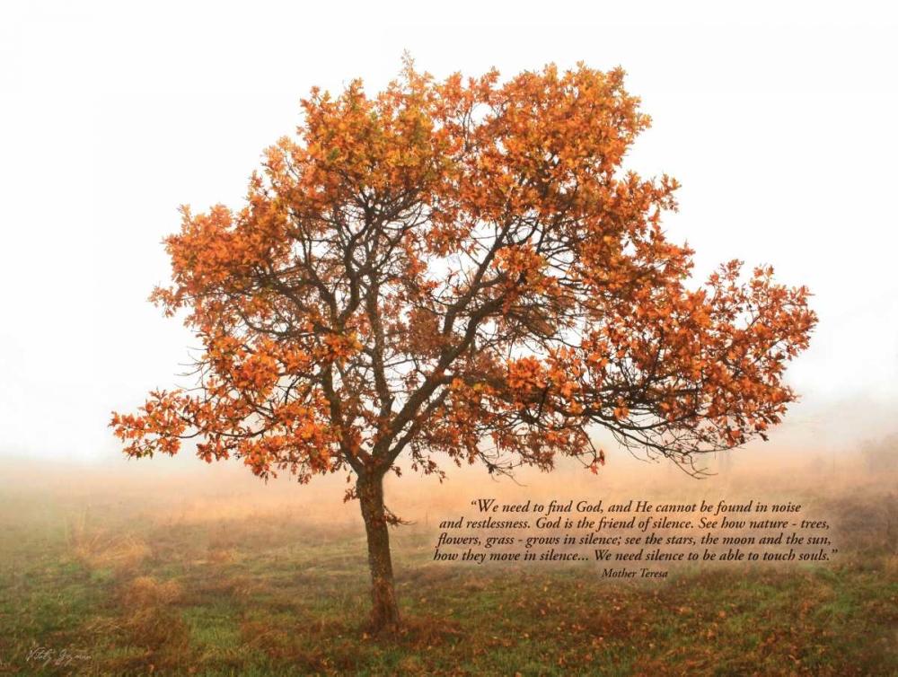 Silent Oak Geyman, Vitaly 6910