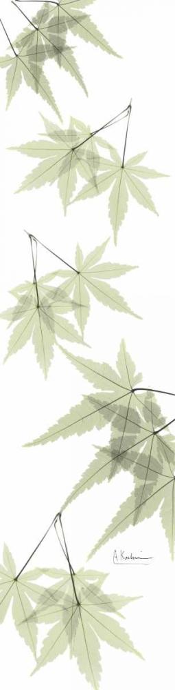 Leaves in Green Koetsier, Albert 22090