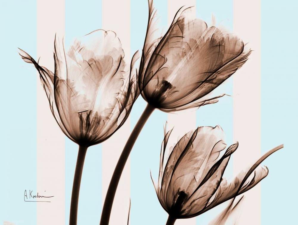 Tulips Brown on Blue Koetsier, Albert 22329