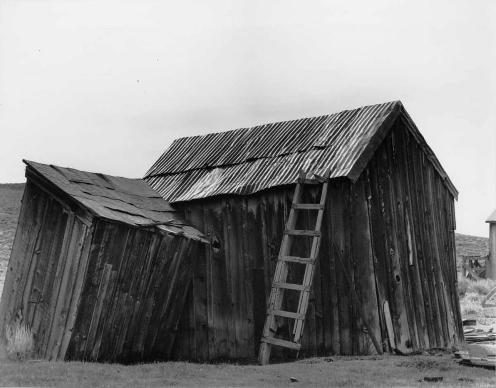 Bodi Ladder Koetsier, Albert 37192