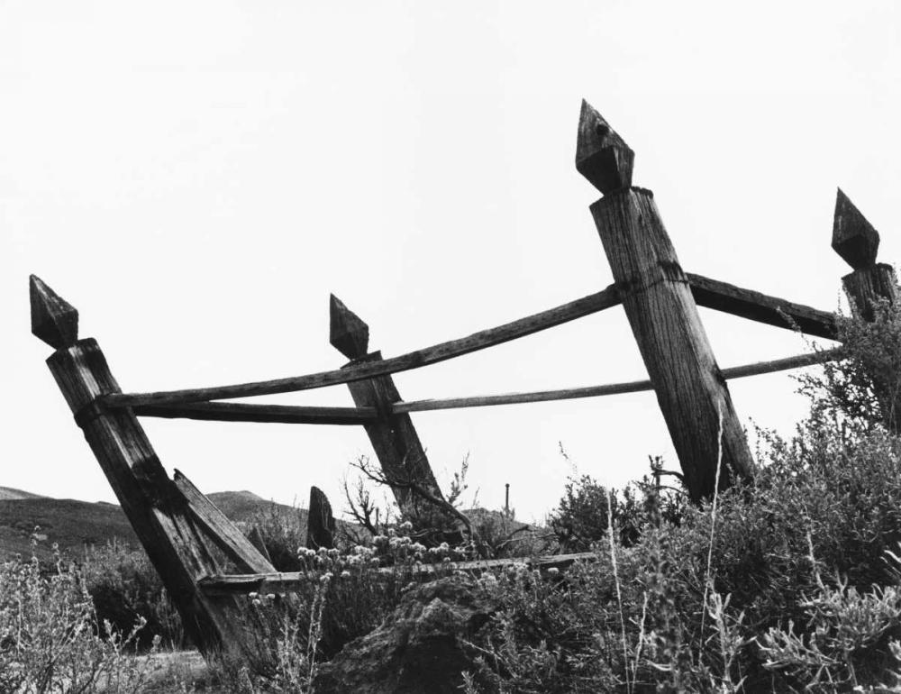 The Bodi Fence Koetsier, Albert 37208