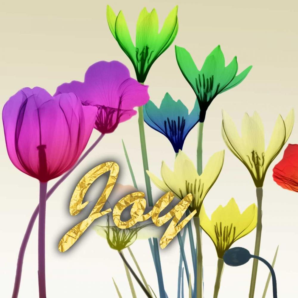 Floral Calm Pop Joy Koetsier, Albert 151693