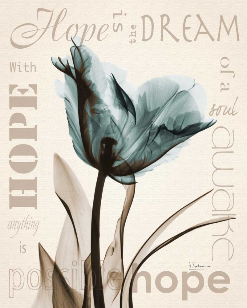 Hope Tulip Koetsier, Albert 37232