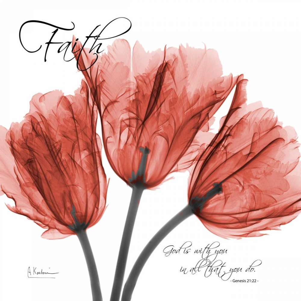 Royal Red Tulip -Faith Koetsier, Albert 22441