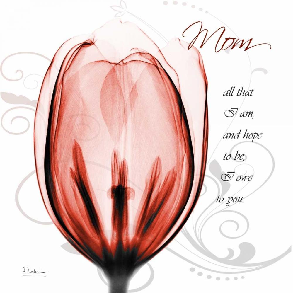 Happy Tulip in Red - Mom Koetsier, Albert 22511