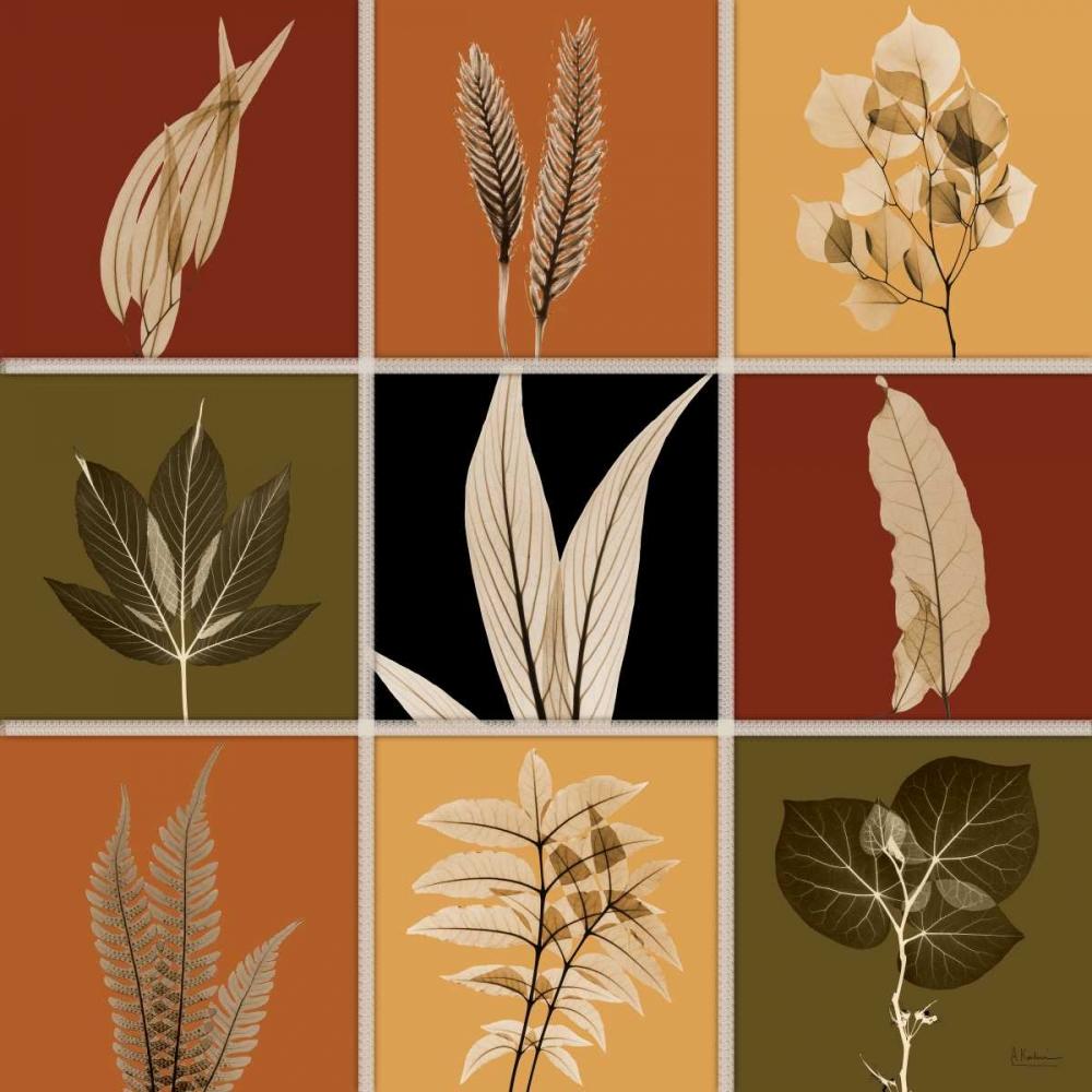 Harvest 9 patch 1 Koetsier, Albert 22609
