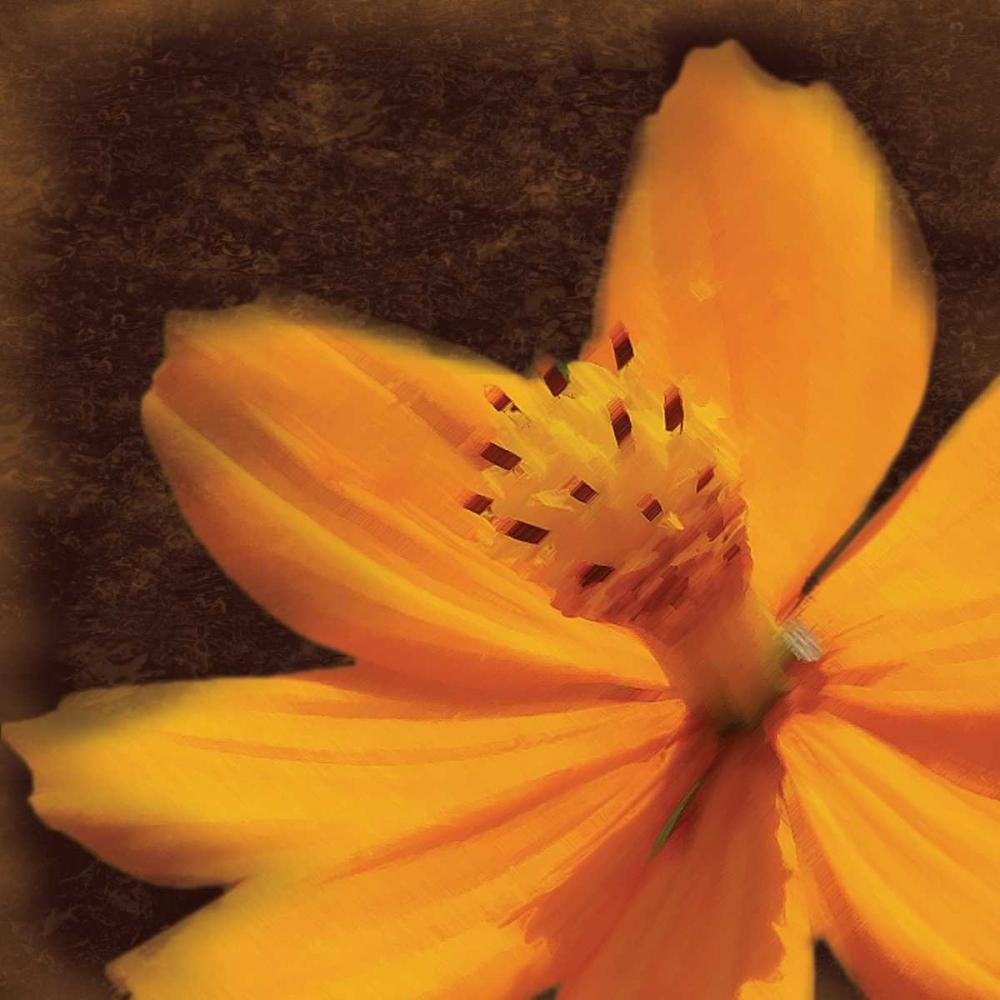 Just The Flower Gibbons, Lauren 75956