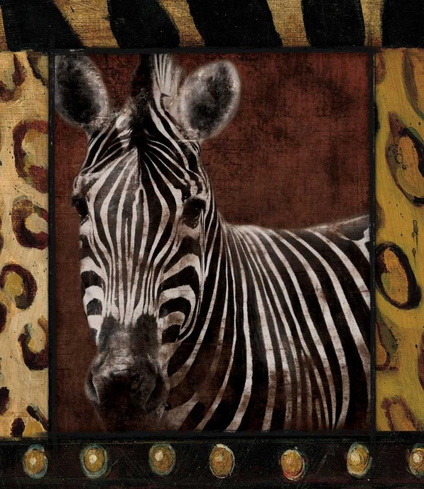 Zebra Dordered Grey, Jace 26358