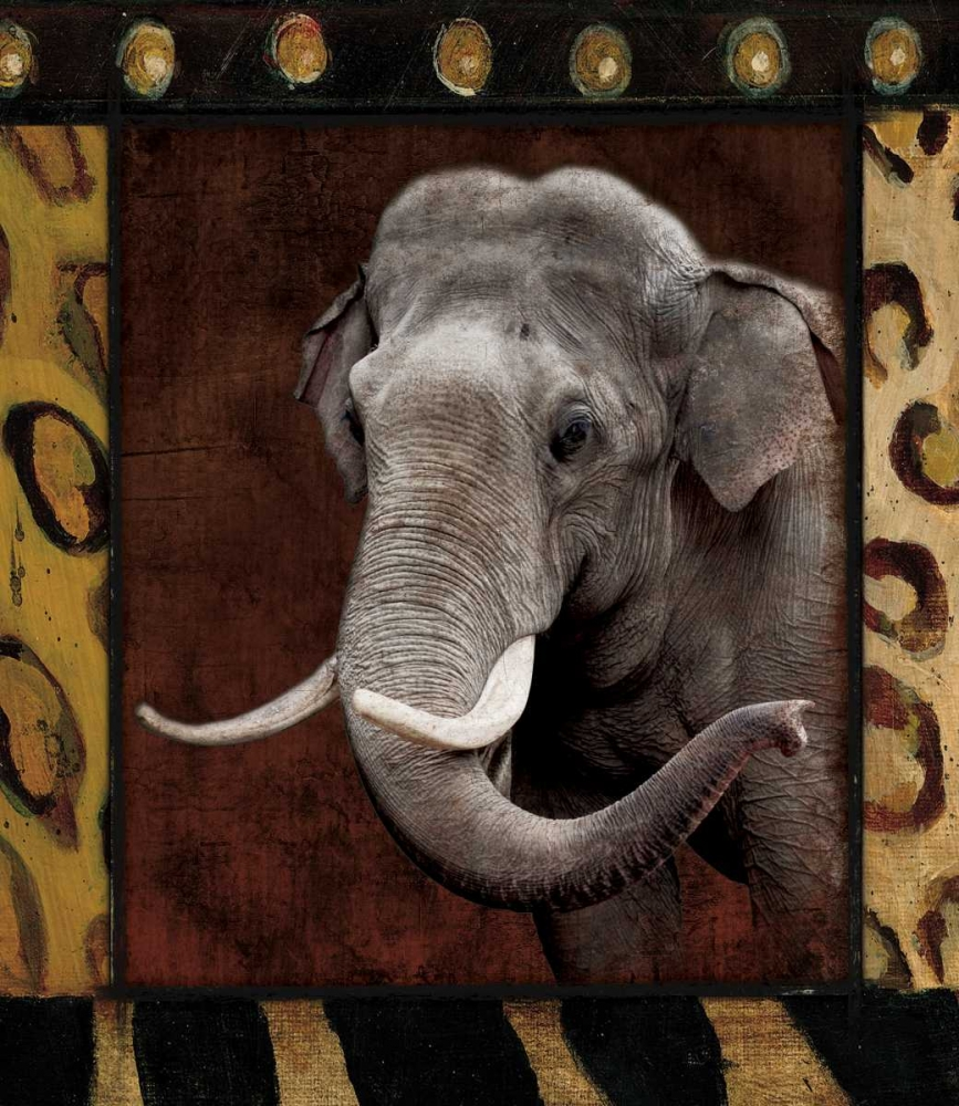Elephant Bordered Grey, Jace 26360