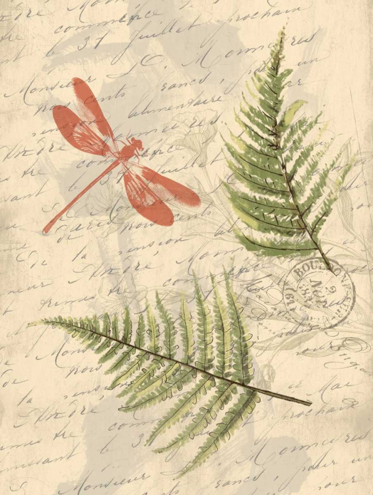 Ferns Grey, Jace 37418