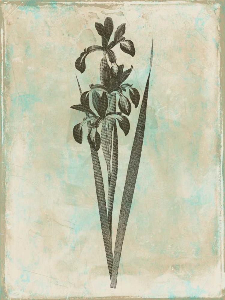 Earthy Floral Blend Grey, Jace 37481