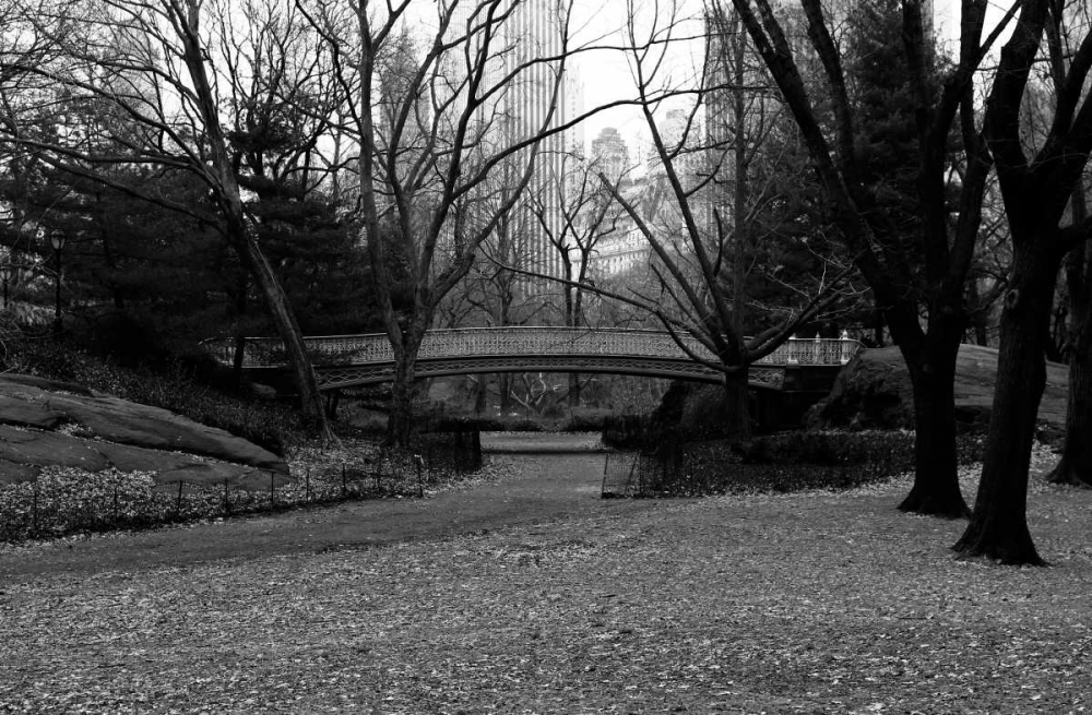 Central Park Bridge 3 Grey, Jace 86747