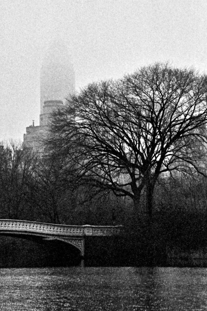 Central Park Bridge I Grey, Jace 86780