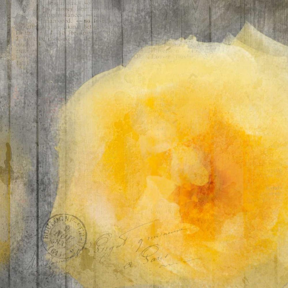 Yellow Bloom Allen, Kimberly 106718