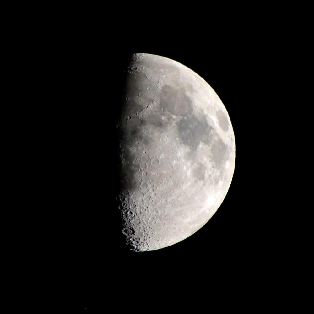 Half Moon Allen, Kimberly 125859