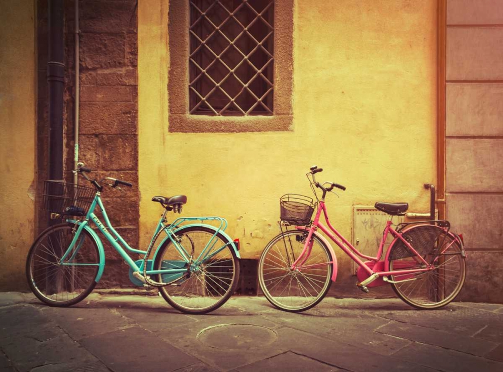Blue and Pink Bikes Roland, James 138450