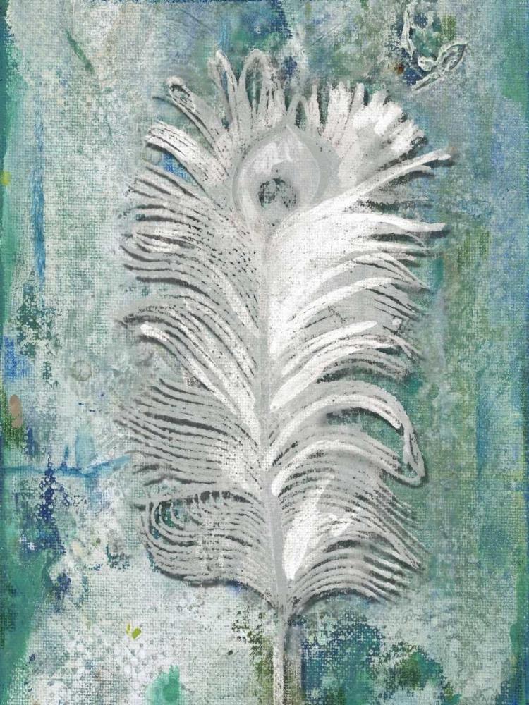 Silvery Peacock 1 Haynes, Smith 152719