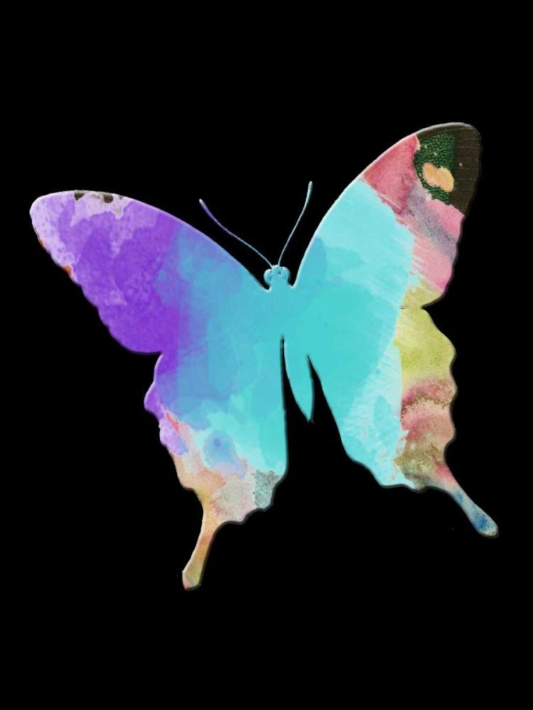 Butterfly Watercolor Lewis, Sheldon 152749