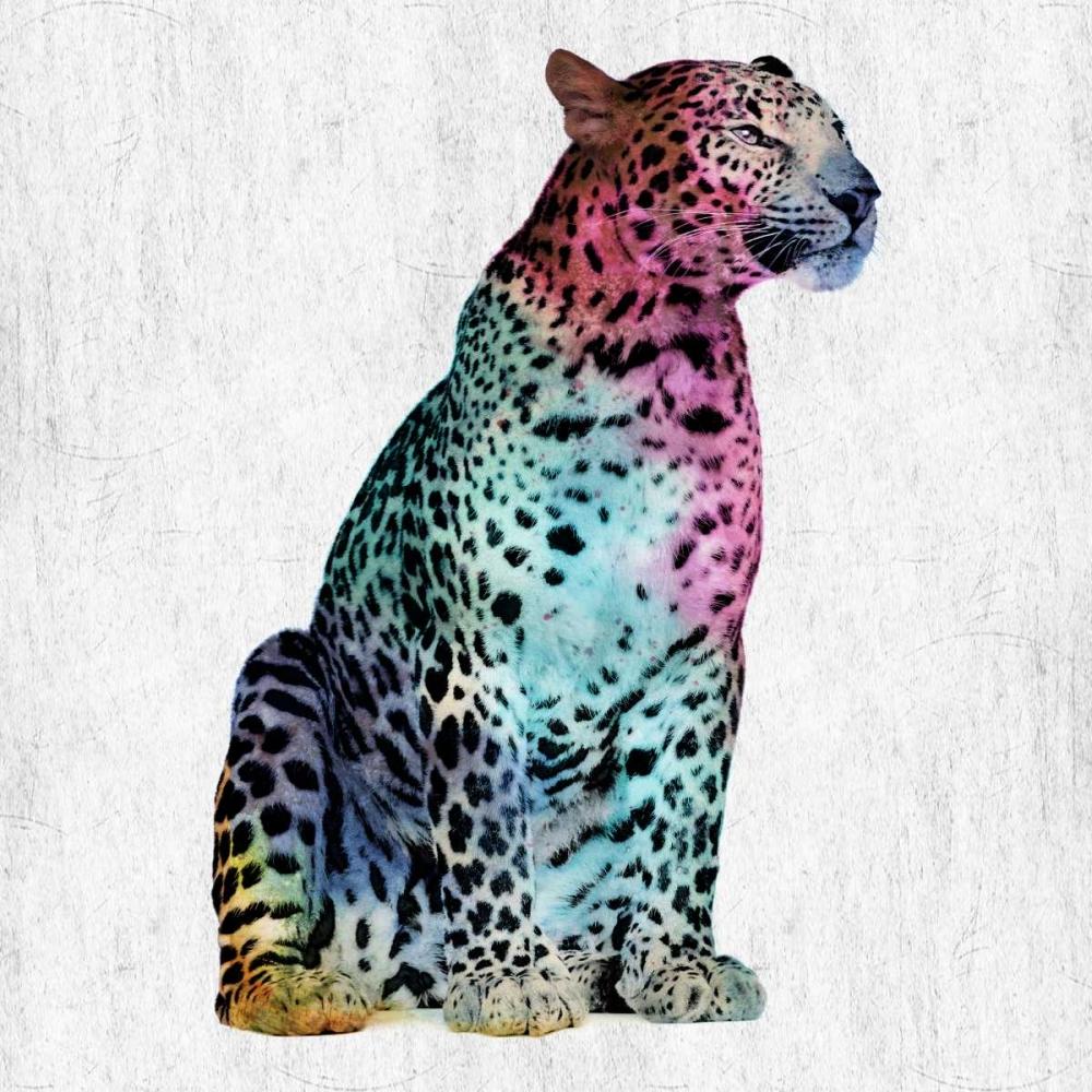 Majestic Cat Lewis, Sheldon 139515