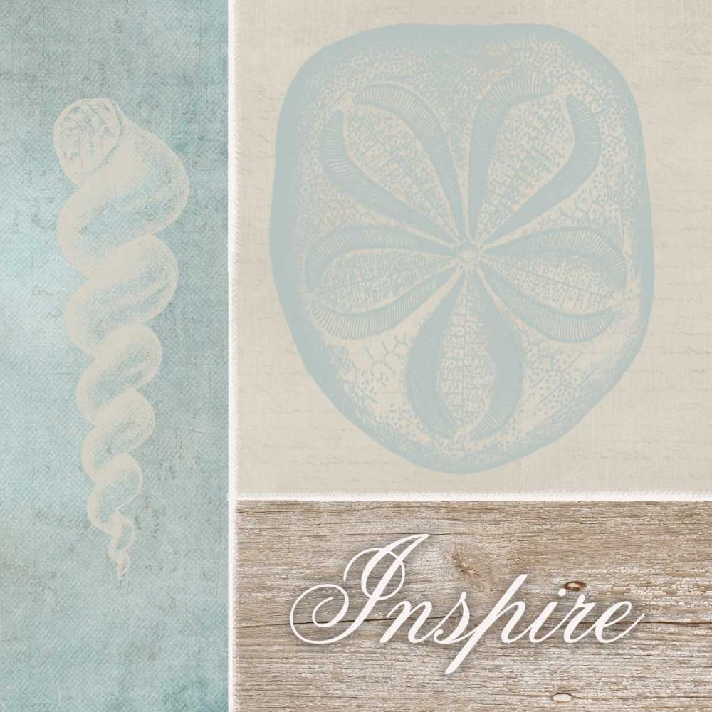 Inspire Shells Greene, Taylor 41029