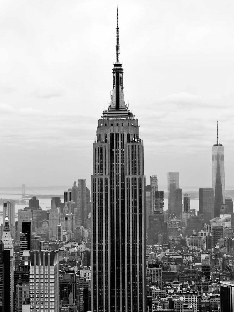 Empire State Telik, Tracey 107039